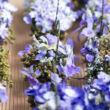 Kék árnyalatú virágok mini kosárban