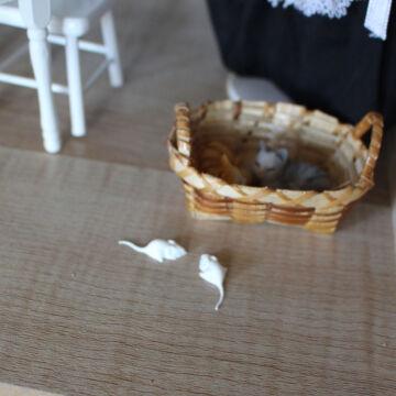 Fehér egerek szett 5 db