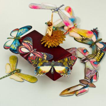 Pillangók és szitakötők  10 darabos szett