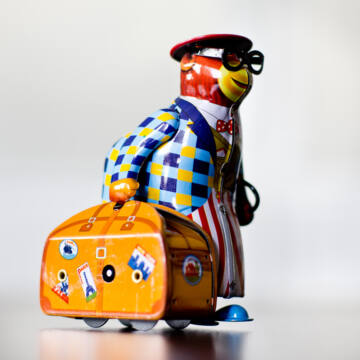 Medve bőrönddel lemezjáték