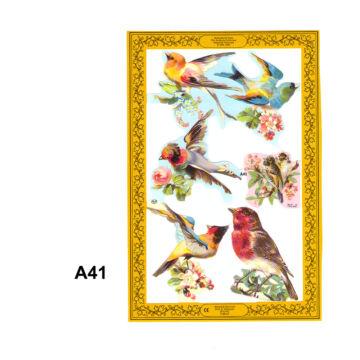 Relief Birds
