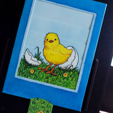 Secret of egg is chick changing card