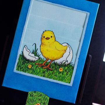 A tojás titka a csibe  - változó képeslap