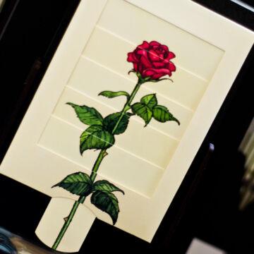 Feslő rózsabimbó  - változó képeslap