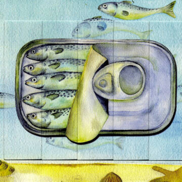 Canned fish - changing card