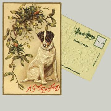 Karácsonyi üdvözlet állatbarátoknak - kutya
