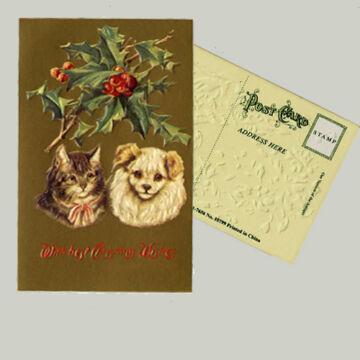 Karácsonyi üdvözlet állatbarátoknak  - kutya-macska barátság
