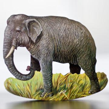 Afrikai elefánt - hintázó figura, képeslap borítékkal