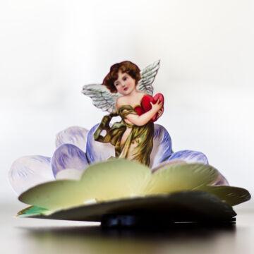 CUPIDO's flower 3D card