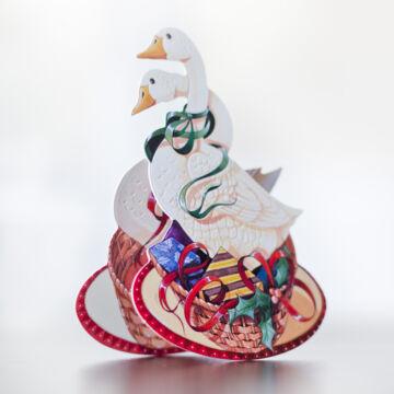 Gooses seesaw Card wih envelope