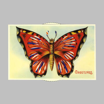 Red Butterfly changing card
