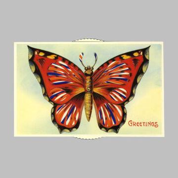 Vörös pillangó  változó képeslap