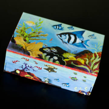 Csikóhal - zenélő ékszerdoboz