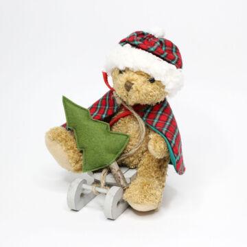 Bear with pelerine